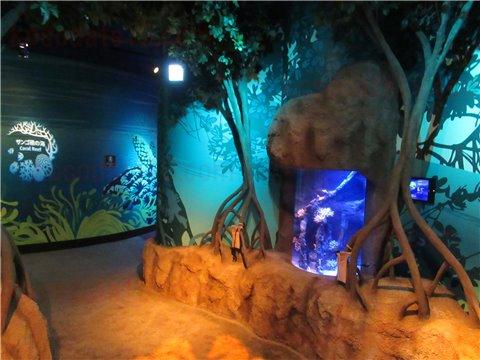 シーライフ名古屋のタツノオトシゴのすみか。タツノオトシゴを展示したゾーン。(SEALIFEレゴランドの水族館)2