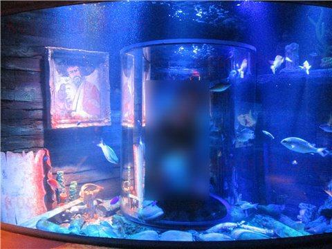 シーライフ名古屋の沈没船。沈没船というより、海賊船のようなイメージのゾーン。(SEALIFEレゴランドの水族館)1