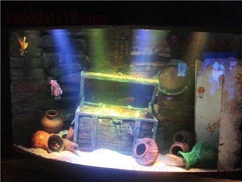 シーライフ名古屋の沈没船。沈没船というより、海賊船のようなイメージのゾーン。(SEALIFEレゴランドの水族館)2