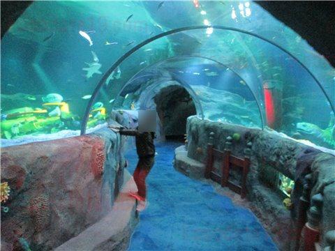 シーライフ名古屋の竜宮城。シーライフナゴヤのテーマであった「浦島太郎」の世界のゾーン。(SEALIFEレゴランドの水族館)2