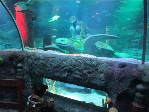 シーライフ名古屋の竜宮城。シーライフナゴヤのテーマであった「浦島太郎」の世界のゾーン。(SEALIFEレゴランドの水族館)3