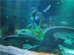 シーライフ名古屋の竜宮城。シーライフナゴヤのテーマであった「浦島太郎」の世界のゾーン。(SEALIFEレゴランドの水族館)5