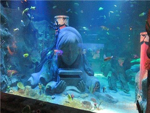 シーライフ名古屋の竜宮城。シーライフナゴヤのテーマであった「浦島太郎」の世界のゾーン。(SEALIFEレゴランドの水族館)9