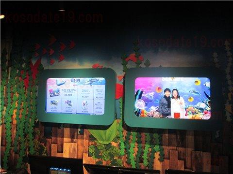 水族館シーライフ名古屋へ入場する時に撮影する写真を買うのもお土産・グッズとしておすすめ1