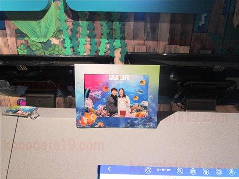 水族館シーライフ名古屋へ入場する時に撮影する写真を買うのもお土産・グッズとしておすすめ3