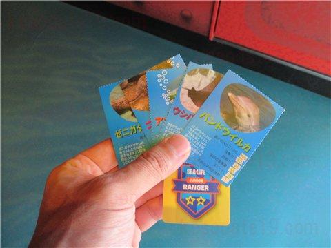 レンジャーミッションのカード