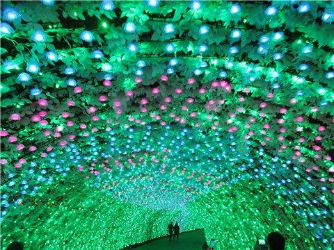 最後のイルミネーションは100Mのトンネル「バラ」